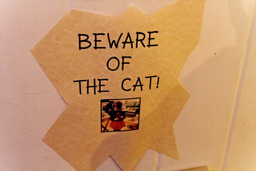 Cartaz Beware of the cat