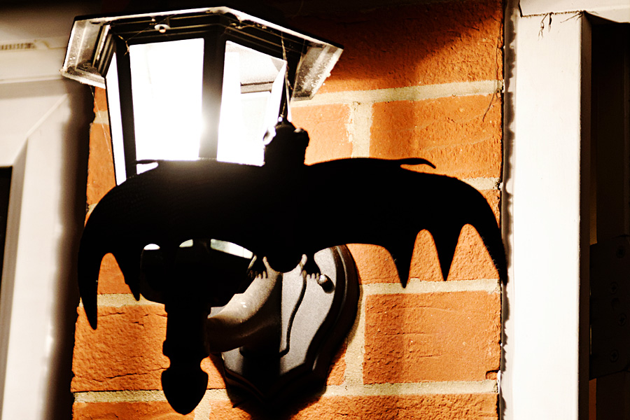 Morcego na luminária