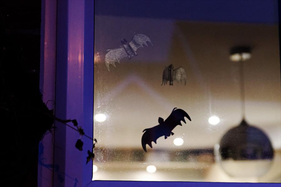 Morcegos na janela