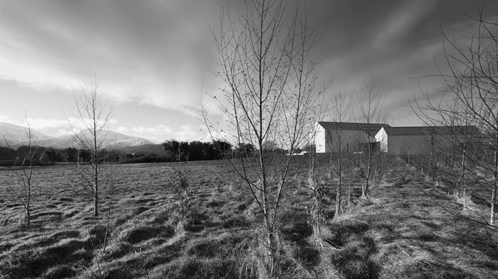 House at Maghera McGonigle McGrath 06