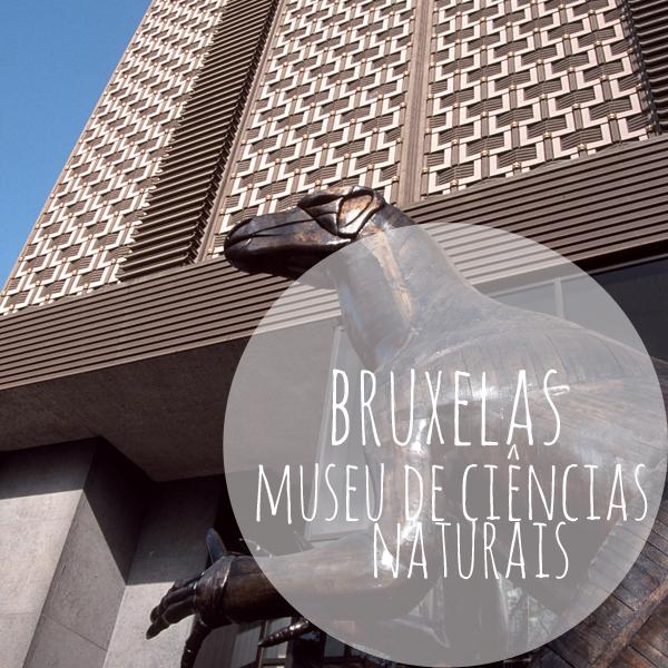 museu de ciências naturais banner