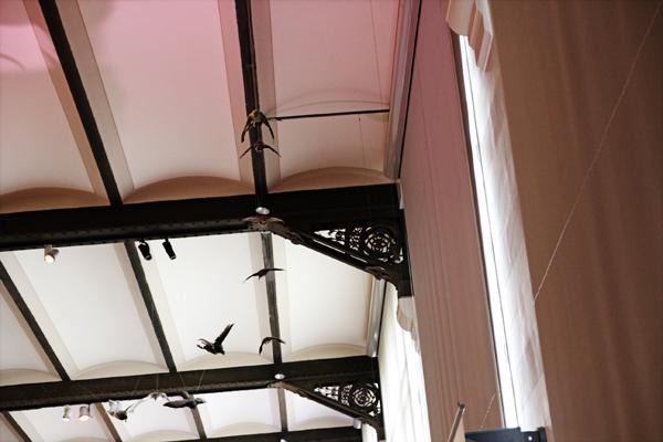 museu de ciências naturais detalhe